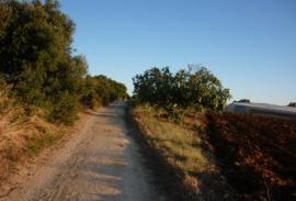 Bici (Cádiz): Roche-Naveros-Conil