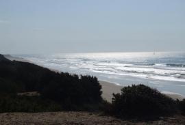 Windsurfing and Kitesurfing (Cadiz): An endless choice