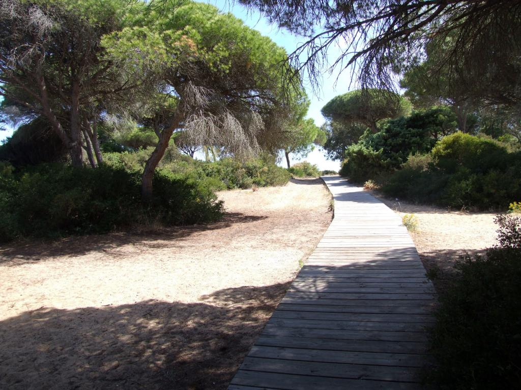 Cro beach path