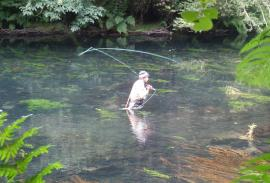 Fishing (La Coruña): Trout and Salmon-trout on the Eume