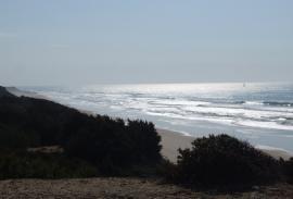 Windsurfing and Kitesurfing: an endless choice