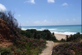Blue beach 006