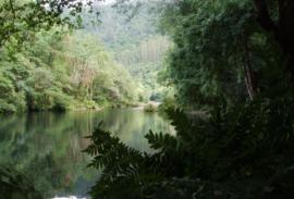 Bici (La Coruña): Por el Parque Natural de Las Fragas del Eume